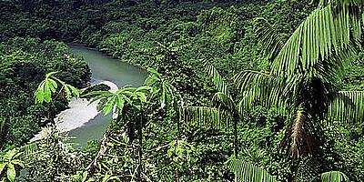 Conservando la zona Chocó