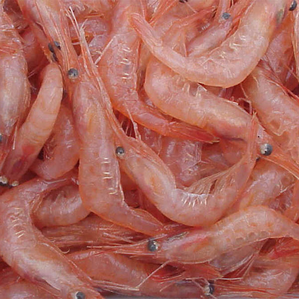 From Great Industry to Sustainable Industry: A new alternative for shrimp waste