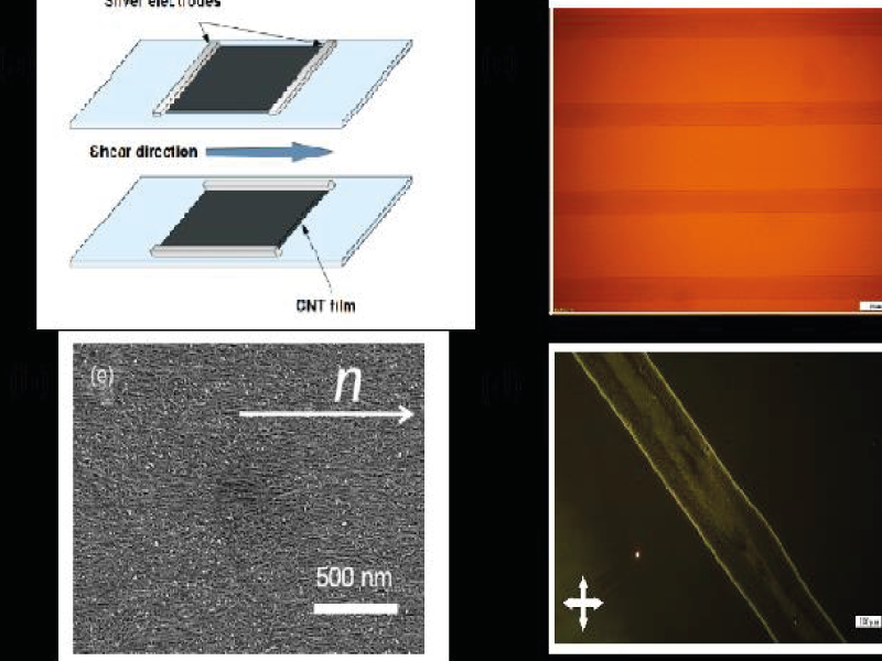 Liquid crystals based on carbon nanotubes and graphene: synthesis and applications