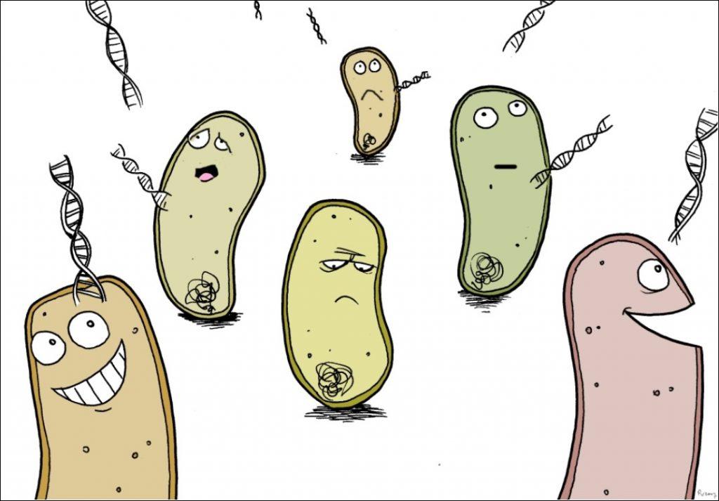 Apocalipsis microbiano