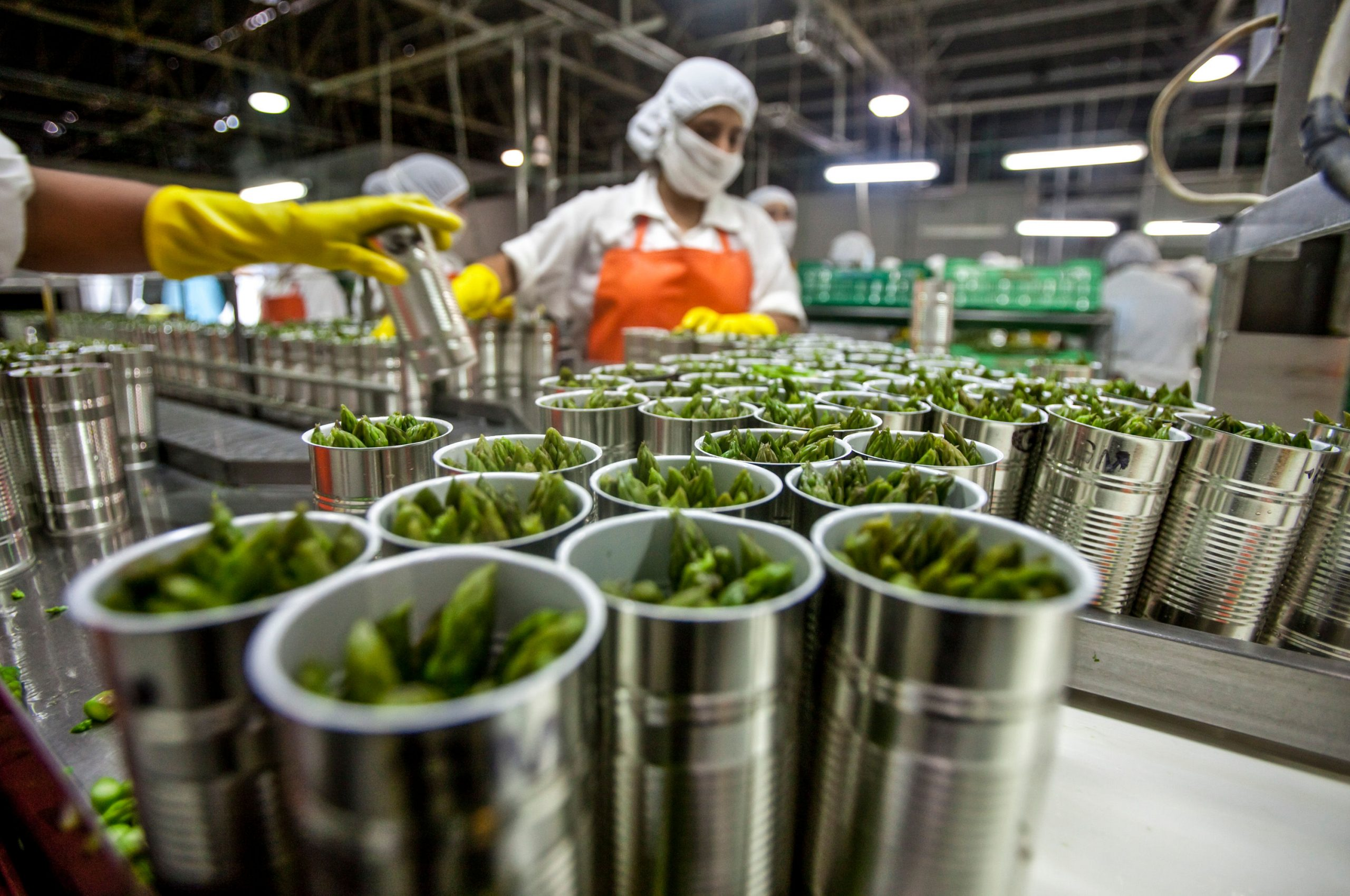 Agroindustria Alimentaria