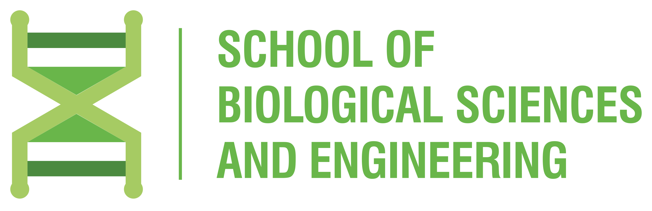SCHOOL OF BIOLOGICAL SCIENCES AND ENGINEERING